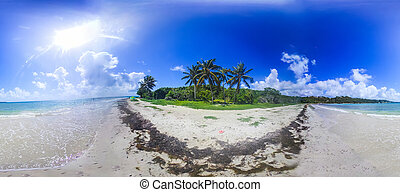 360 degrees panorama of Pointe de la Saline beach in Guadeloupe