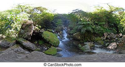 360vr, 山, rainforest, 川