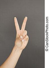 382  Hand