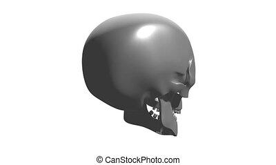 3D 4k rotating human skull - isolated on white background