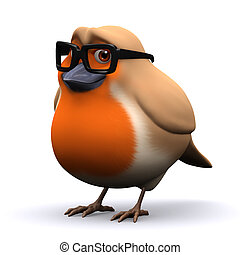 3d Academic robin red breast
