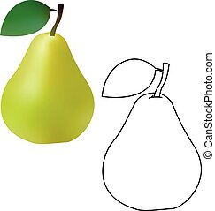 3d and line realistic green pear isolated on white background. Vector illustration.