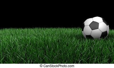 3D animation, classic soccer ball rolling across a green...