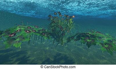 flowers under water in lake water