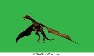 Dragon in fly - separated on green screen
