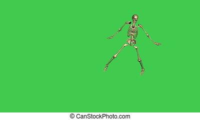 skeleton baseball lead - separate on green screen