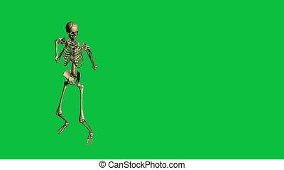 skeleton boxing  - separate on green screen