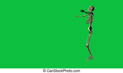 skeleton exercise karate - separate on green screen - 3d...