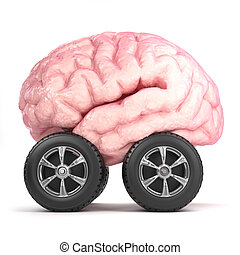 3d Brain on wheels