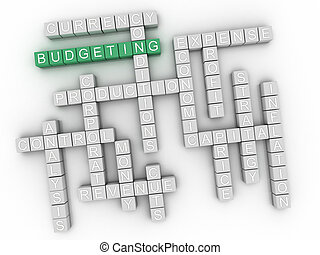 3d Budgeting Concept word cloud