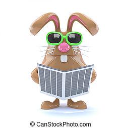 3d Bunny news
