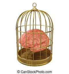 3d Caged brain