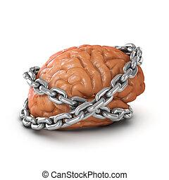 3d, cerebro, encadenado