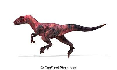 3D CG rendering of Dinosaurs