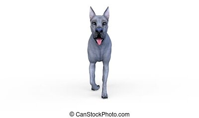 3D CG rendering of dog