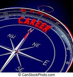3D compass - Career