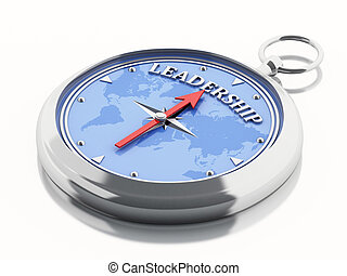 3d Compass leadership