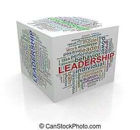 3d cube word tags wordcloud of leadership