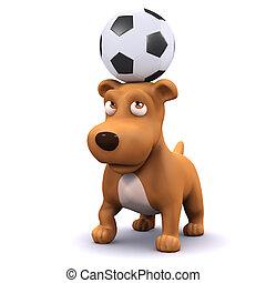 3d Cute dog with football on head