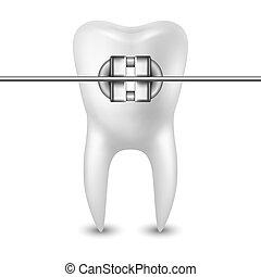 3d, dent, bretelles, closeup, dentiste, concept, santé, icône, vecteur, réaliste, dentaire, gabarit, isolé, conception, monde médical, blanc, arrière-plan., clipart.