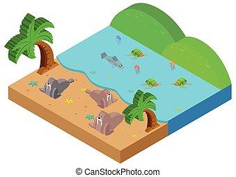 3D design for ocean scene with sea animals