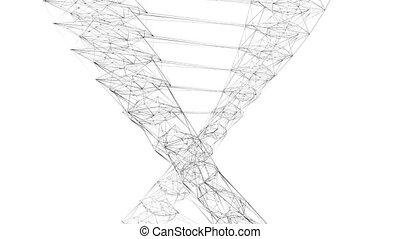 3D DNA code/ DNA chain