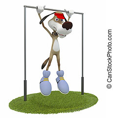 3d dog gymnast.