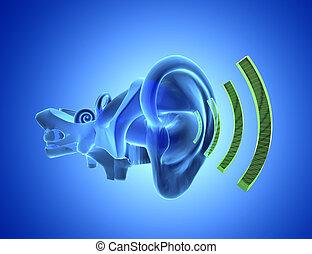 3D ear anatomy with sound