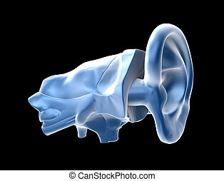 3d ears background