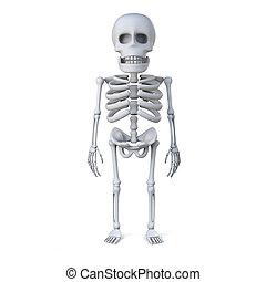 3d, esqueleto