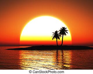 3d, fazendo, de, um, bonito, tropicais, sunset.