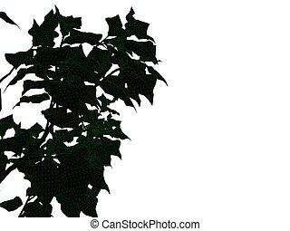 3d, fazendo, de, um, esboçado, pretas, árvore, com, verde, bordas, isolado, branco, fundo