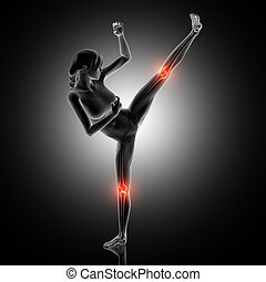 3D female figure in kick boxing pose with knee joints highlighted