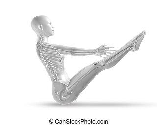 3d, femininas, médico, figura, com, esqueleto, em, ioga posa