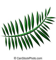 3D Fern - 3d fern isolated in white