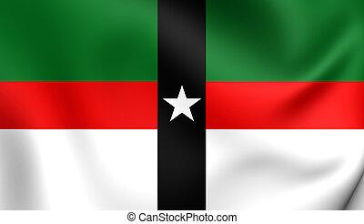 Flag of Denison City (Texas), USA.