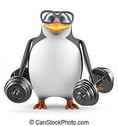 3d, gewichte, acedemic, heben, pinguin