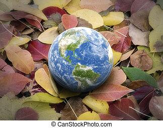 3d Globe on leaves