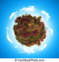 3D globe with heathr and fern