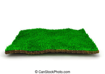 3d grass lawn, on white background
