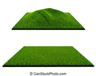 3d grass on white background