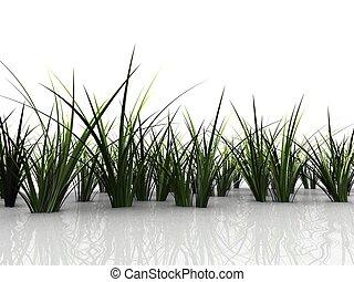 3d grass - 3d rendered illustration of green grass