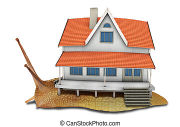 3d Home - Snail with beautiful wooden house. Isolated on...