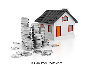 3d House with money