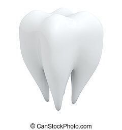 3D human tooth isolated on white background.