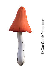 3D Illustration Mushroom on White