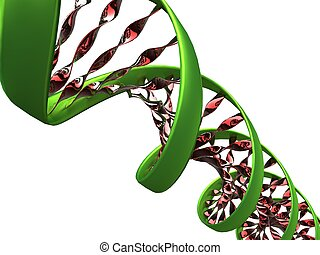 3d illustration of a dna molecule on white background