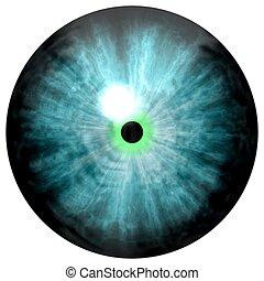 3D illustration of blue eye iris