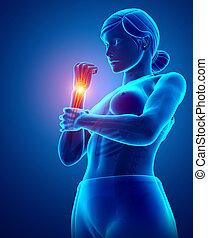 Women Feeling the Wrist Pain - 3d Illustration of Women...