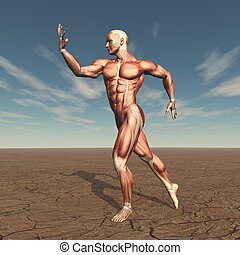 3D image of a male body builder with muscle map in barren landscape